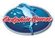 SST Dolphin Quest Logo