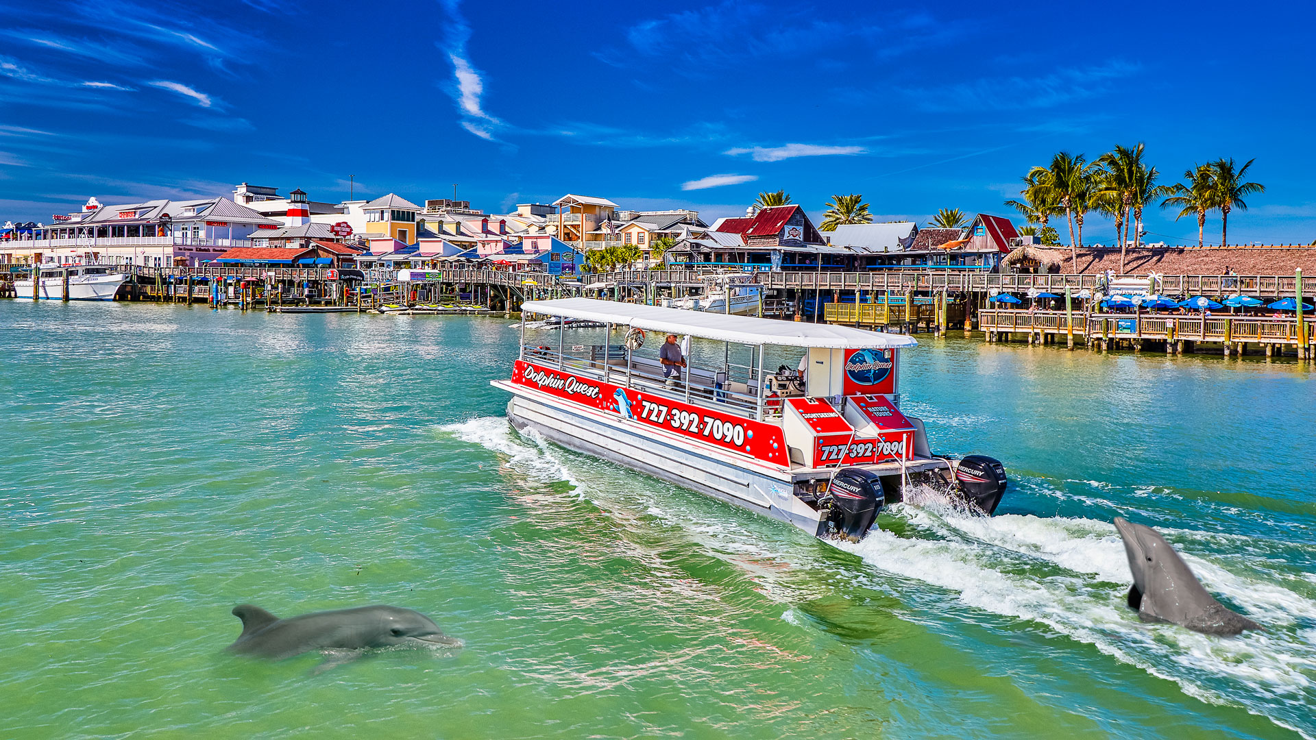 SST Dolphin Quest Boat